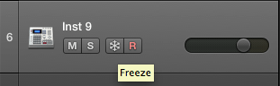 Freeze Icon as appeared on Track Header.